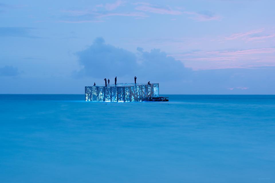 Coralarium_Maldives