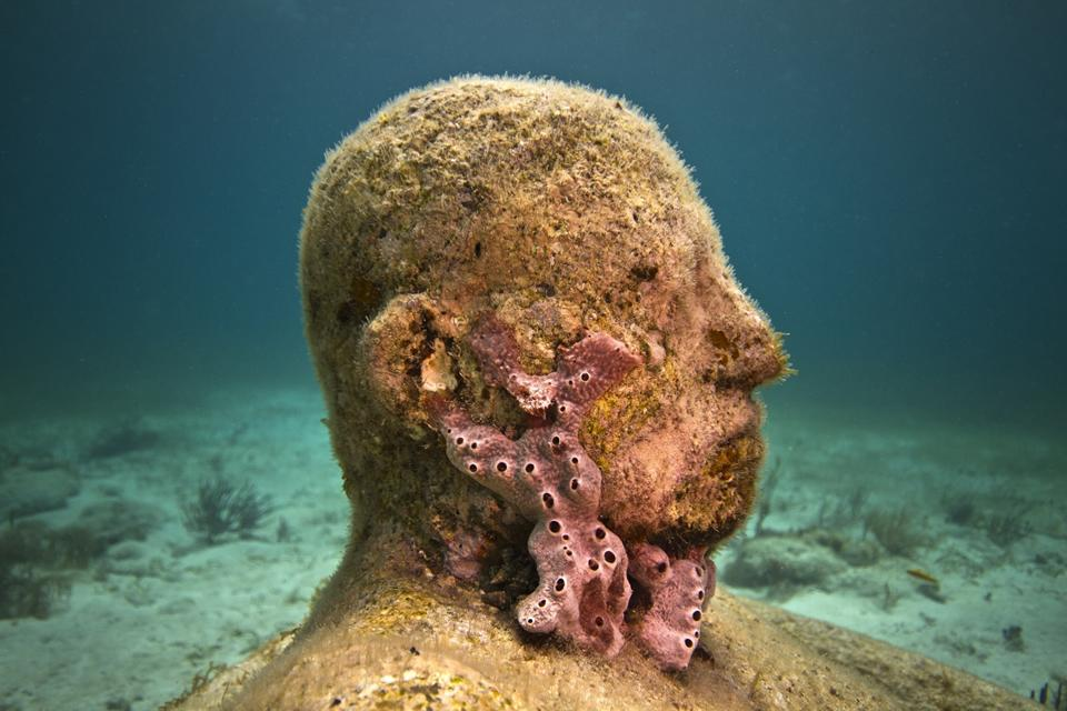 Inertia_Mexico_coral_8453_Jason deCaires Taylor_Sculpture