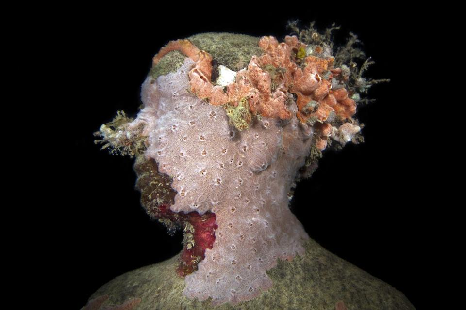 Vicissitudes_Grenada_coral_night_IMG_0570_Jason deCaires Taylor_Sculpture