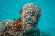 Museo Atlantico_Lanzarote_Hybrid Forest_growth_04438_Jason deCaires Taylor_Sculpture