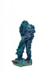 Blue Coral Figure 61