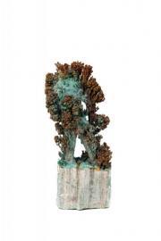 Brown Coral Figure 27