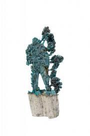 Blue Coral Figure 44