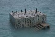 The Sculpture Coralarium