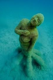 Museo Atlantico, Lanzarote, Hybrid Forest Jason deCaires Taylor Sculpture