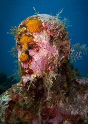 Silent Evolution_Mexico_coral_Jason deCaires Taylor_Sculpture