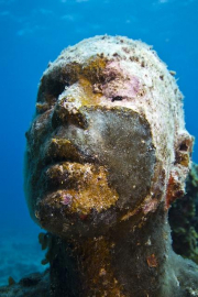 Silent Evolution_Mexico_coral_head_Jason deCaires Taylor_Sculpture