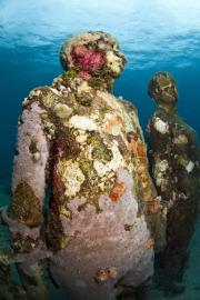 Vicissitudes_Grenada_coral_035_Jason deCaires Taylor_Sculpture