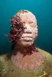 Vicissitudes_Grenada_coral_037_Jason deCaires Taylor_Sculpture