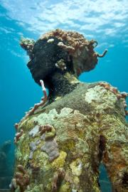 Vicissitudes_Grenada_portrait_coral_01_Jason deCaires Taylor_Sculpture