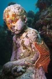 Silent Evolution_Mexico_coral_starfish_Jason deCaires Taylor_Sculpture