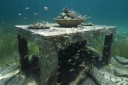 The Last Supper_Mexico_growth_Jason deCaires Taylor_Sculpture