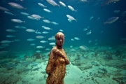 Void_Mexico_growth_Jason deCaires Taylor_Sculpture