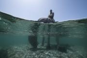 The Rising Tide, Lanzarote Jason deCaires Taylor Sculpture